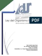 Resumen Ley Del Organismo Ejecutivo Guatemala