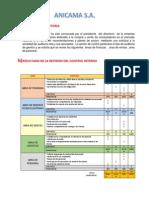 ANICAMA .pdf