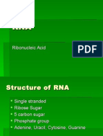 RNA PowerPoint