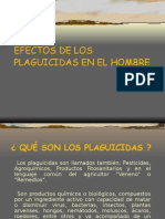 efectos de los plaguicidas en el hombre