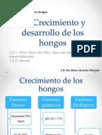 2.5 Crecimiento y Desarrollo de Los Hongos