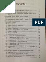 Sumario - Direiro Constitucional Descomplicado - 4 Edic.