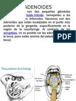 adenoides.ppt