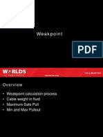TTP Weakpoint NT (Turning Point) Rev10b