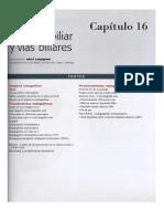 Vesicula Biliar y Vias Biliares