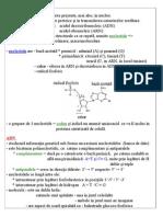 Celula - Partea II - Acizii Nucleici