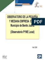 Observatorio Pyme Mexico 2006 16 V