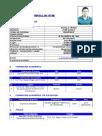 Curriculum Formato Institucional