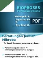 Ppt Kelompok 9 Perhitungan Mikroba