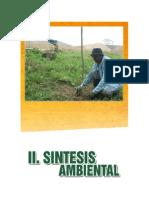 4-Sintesis-Ambiental