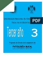 Silabus Patologa Bucal 2013