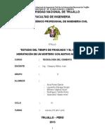 ADITIVO-ACELERANTE-1 (1)