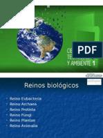 PP Unidad 10.pps