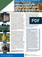 Factsheet Nicaragua Sp
