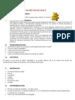 GUÌA DE PRÀCTICA- NECTAR DE CAPULÌ.docx