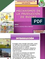 mecanismosdelaproducciondebiogs-120124204922-phpapp01