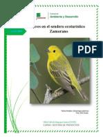 Aves en El Sendero Ecoturístico Zamorano