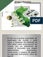 esparargos (2).pptx