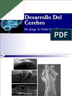 6 Embio Cerebro-JAOC 2015