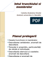 Scheletul Trunchiului Si Membrelor