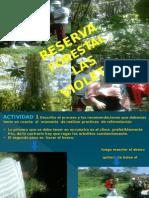 Reserva Forestal Las Violetas