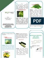 OK Leaflet Obat Herbal