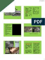 Clase 10 de Enfermedades en Viveros Forestales