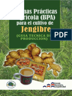 Manual BPA Del Jengibre