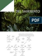 Vía del shikimato.pdf