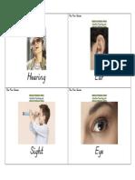 Health Flash Cards Five Senses
