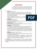 CURSO EN LÍNEA.docx