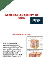 Anatomy - General anatomy of skin.pptx