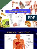 Sist Digestorio