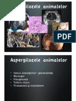 Aspergiloza