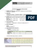 Ficha de Proyectos