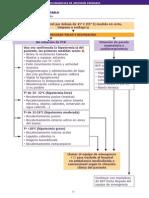 Algoritmos urgencias - Alteraciones de La Termorregulacion