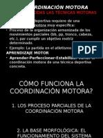 La Coordinación Motora
