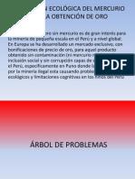 MIERIA ILEGAL.pdf