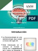 Fenomenología Del Conocimiento