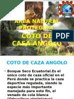 Coto Caza Angolo