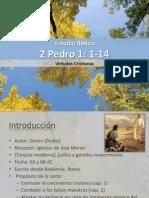 Estudio biblico 2 pedro.pdf