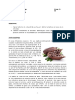 Extracción de Cacao