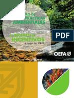 Cartilla El Registro de Buenas Practicas Ambientales y El Regimen de Incentivos a Cargo Del Oefa