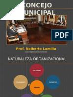 Tema 7; Concejo Municipal