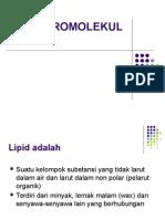 6.Lipid 2010