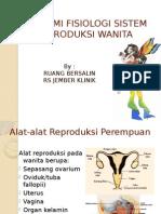 Ppt Anatomi Fisiologi Sistem Reproduksi Wanita