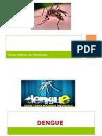 -Dengue y Chinkungunya