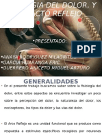 Expocicion Fisiologia 01-11-15