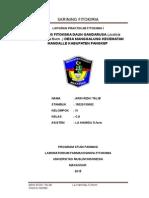 Laporan Praktikum Fitokimia i