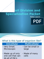 cell division and specialization packet